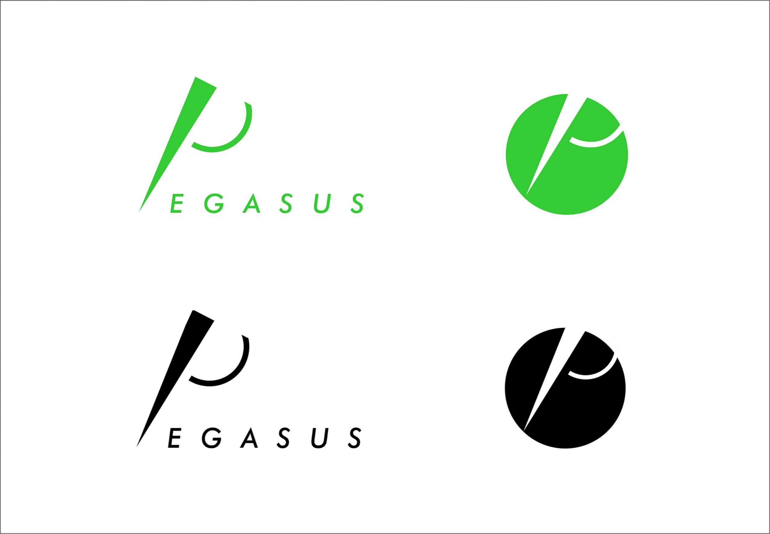 A_PEGASUS_2